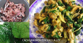 Cách làm món ếch xào lá lốt trong 30 phút