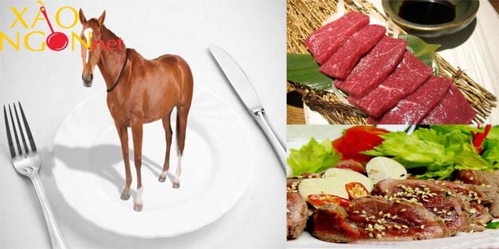 Tác dụng của thịt ngựa
