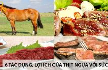 6 tác dụng, lợi ích của thịt ngựa đối với sức khỏe 1