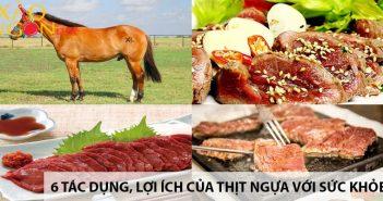 6 tác dụng, lợi ích của thịt ngựa đối với sức khỏe 3