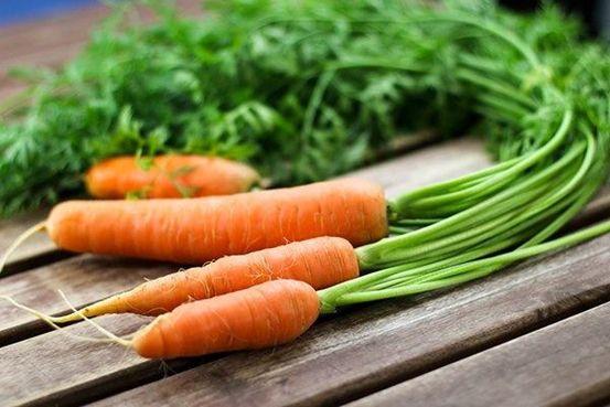 Để bảo vệ mắt, hãy ăn nhiều cà rốt