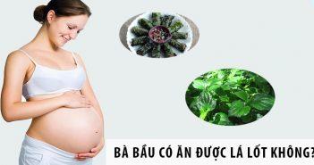 Bà bầu có ăn được lá lốt trong thời gian mang thai không?