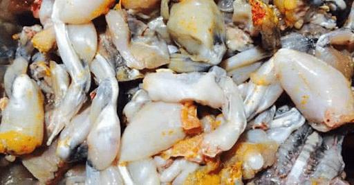 Ướp thịt ếch khoảng 30 phút cho ngấm gia vị