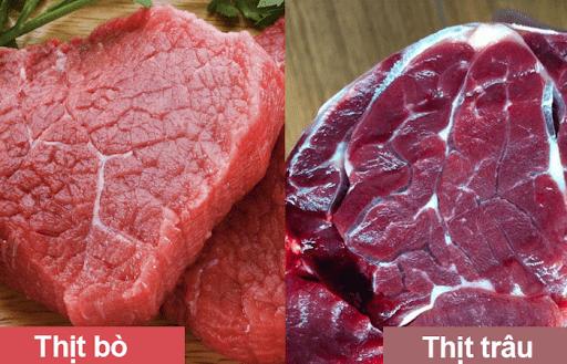 Thớ thịt bò nhỏ và mịn hơn thớ thịt trâu